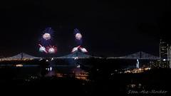 View from Coit Tower - Bay Lights Re-Lighting and Super Bowl City Fireworks Show - 013016 - 06 (Stan-the-Rocker) Tags: sanfrancisco sony coittower northbeach embarcadero ferrybuilding telegraphhill nex sanfranciscooaklandbaybridge sfobb sb50 baylights sel1855 stantherocker