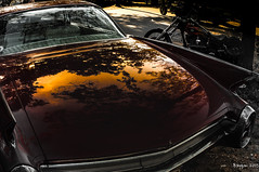 Landscaped hood (ericbaygon) Tags: car bike landscape nikon gm meeting voiture cadillac harley american moto hood paysage capot amricaine worldcars d300s