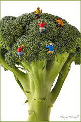 Lads will be Lads.... (toonarmy59) Tags: red orange white green miniature broccoli micro figure highkey hblue