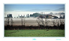 Nebbia - Fog (Jambo Jambo) Tags: panorama fog landscape tuscany toscana nebbia grosseto maremma nikonflickraward nikond5000 jambojambo