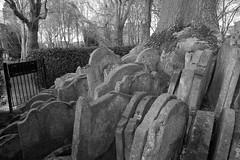 Gravestones around the Hardy Tree (IanAWood) Tags: urban stpancras walkingwithmynikon lbofcamden nikkorafs28mmf18g nikondf