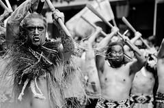 TPPA 2016-12 (domhartnett) Tags: newzealand democracy protest auckland aotearoa queenstreet skycity aoteasquare tpp tangatawhenua thisiswhatdemocracylookslike tppa tetiritiowaitangi thetreatyofwaitangi realchoice stoptpp tppanoway tranpacificpartnership itsourfuture noaltpp