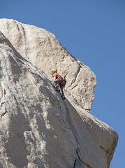 Anglų lietuvių žodynas. Žodis climber reiškia n 1) alpinistas; 2) vijoklis; 3)perk. garbėtroška lietuviškai.