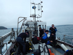 Plymouth-201506-42-CoolDayOnTheBoat (Tony J Gilbert) Tags: macro marine underwater plymouth diving scylla jameseaganlayne nikond300 handdeeps wwwdivingplymouthcom ceeking hilseapointrocks