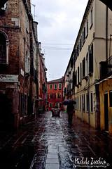 Venice in the rain (Michele Zecchin) Tags: venice italy man wet rain weather umbrella landscape shower italia day uomo rainy ugly michele venezia pioggia paesaggio meteo ombrello tampo giorno veneto brutto piovoso zecchin tamron2470 nikond750