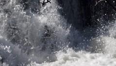 P1190798 (Rimager) Tags: water river waterfall dam fallingwater