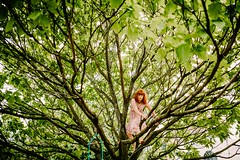 kids in trees-1 (Noel Deasington Wedding Photography) Tags: wedding summer tree bristol devon treeclimbing weddingphotographer theoldrectory kidsintrees pyworthy