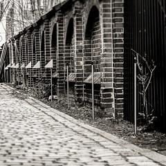 Listen and Repeat (stephanboblest) Tags: street blackandwhite bw berlin lamp lines stone wall canon linie line steine monochrom minimalism stein bnw repeat mauer steglitz linien wiederholung schwarzweis