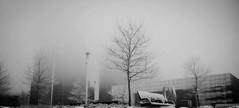 SNOWY TUESDAY (tomek9309) Tags: street winter snow cleveland snowystreet winterscene clevelandsnow