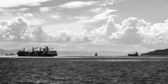 _MG_6847.jpg (felipehuelvaphoto) Tags: sea blackandwhite bw espaa byn blancoynegro water clouds mar spain agua barco noiretblanc andalucia morocco maroc nubes cadiz gibraltar marruecos estrecho 2016 straitofgibraltar estrechodegibraltar