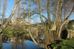 Allariz (avillaltal) Tags: bridge espaa tree water ro river puente spain agua rbol allariz
