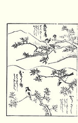 Top  unknown bird; Bottom  coal tit and unknown bird (Japanese Flower and Bird Art) Tags: bird art japan japanese book tit picture coal woodblock ukiyo ater kikuya paridae periparus readercollection shichirobei