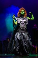 26022016-IMGP8356.jpg (EMMOBBASTAPER) Tags: show teatro italia oz musical lazio spettacolo theather civitavecchia