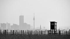 kaisermhlen - vic (gerhard.haindl <on/off>) Tags: sky blackandwhite bw blur dusty landscape geotagged mono cityscape noiretblanc nopeople xf donauturm schwarzweis unocity viennabw geo:lat=4830844976 geo:lon=1641011953 14xp8135v6