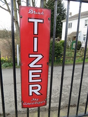 Old sign Tizer fizzy drink IMG_6043 (rowchester) Tags: old drink fizzy carbonated tizer