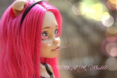 PicsArt_04-09-05.08.23 (Cleo6666) Tags: monster high wolf doll ooak custom mattel repaint howleen monsterhigh