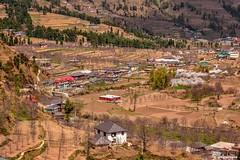 Janjehli valley (Sougata2013) Tags: india landscape village valley mandi himachalpradesh janjehli shikarimata janjehlivalley
