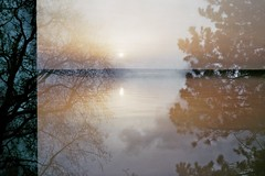 Stillness (AirSonka) Tags: trees sunset reflection film water analog 35mm branches toycamera multipleexposure multiple analogue skinacam pelcula filmphotography pellicule agfavista200 airsonka skinask102f5635mm mehrfachbelichtung skinask102 soniakaniss