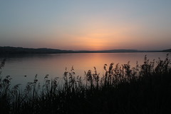 Sunset lake Sempach (CH) (Deirdre MagMa) Tags: sunset summer sun canon switzerland evening zonsondergang explore zomer deirdre avond zon summerevening 47 avondlicht eveninglight zwitserland zomeravond sempach 450d deirdremoments 30april16