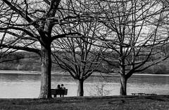 Solace (david_sharo) Tags: trees bw lake canon landscape artistic scenic moraine t5i davidsharo