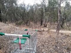 Going Bush (heritagefutures) Tags: road street wild abandoned night corner shopping bench cafe bush trolley dean land april carts albury bushland 2016 hoons scub ningnongs