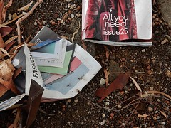 The All You Need Issue (mikecogh) Tags: magazine 25 irony rubbish discarded twigs issue claim thebarton