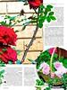 Сад своими руками 5 2016