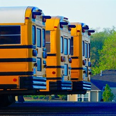 Where school buses go at the end of the day (momrunninglate) Tags: school orange usa bus nature us midwest pattern ks kansas colorsinourworld
