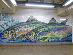 Delancey Street subway station (Goggla) Tags: street new york nyc fish station subway tile mural mosaic salmon mta trout delancey