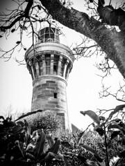 Barrenjoey Lighthouse (Darren Glazer) Tags: blackandwhite lighthouse beach monochrome sydney samsung palm barrenjoey blackandwhitephotography samsunography