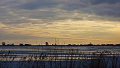 bertrappange-01033.jpg (rappange) Tags: winter landscapes friesland ijsselmeer frysln