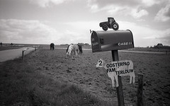 Oosterpad (Arne Kuilman) Tags: horses blackandwhite film netherlands iso100 town nederland samsung scan apx100 pointandshoot v600 agfa marken stad paarden oosterpad slimzoom290ws