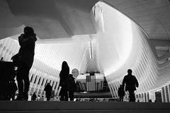 Inside the Oculus (bluebearking) Tags: newyork ilfordhp5 leicam6 theoculusbuilding