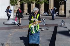 La_mujer_de_las_palomas (Toni Lainez) Tags: street espaa pilar calle europa zaragoza lugares palomas continente aragn plazadel