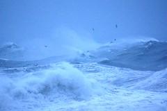 South East storm. (artanglerPD) Tags: storm flying big waves gulls south east foam huge strong winds