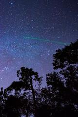 DSC_8726.jpg (Boy of the Forest) Tags: trees sky field fog night stars landscape florida meadow wideangle astro galaxy astrophotography astronomy fl nightsky 15mm milkyway gemeni gemonidsmeteorshower