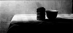 still life (k.hendrik) Tags: bw film analog landscape blackwhite tx400 analogcamera mamiyarz67proii hc110h 140mmmacro 56x26mmback