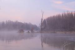 Fog in the river. Niebla en el rio (Jess Ibez) Tags: rio fog river landscape paisaje amanecer ebro niebla larioja
