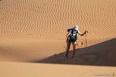 3-Oman-Desert-Marathon-day-2_1646