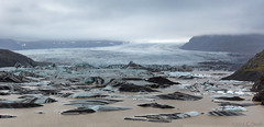 Hoffellsjkull Glacier (cheryl strahl) Tags: lake ice clouds iceland overcast glacier iceberg picturesque climatechange blueice glaciallake droh ofhope dailyray outletglacier hoffellsjkullglacier dailyrayofhope2016 vatnajkulsjgarurnationalpark