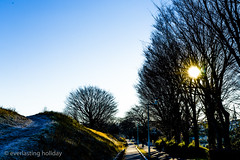 (cycling road in the morning) (everlasting holiday) Tags: road sky sun tree green nature cycling