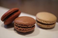 es koyama Macaron Chocolat   (waterfield) Tags: