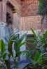 Bahia Palace (Andy Latt) Tags: sony palace morocco maroc bahia marrakech marrakesh bahiapalace palaisdelabahia andylatt rx100m3 dsc007391