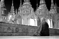 Shwedagon Pagoda (Dagonite) Tags: blackandwhite pagoda shwedagon yangon meditating myanmar buddhistmonk