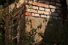 Carved In Stone (gripspix (OFF)) Tags: stone wall carved sandstone wand archive relief stein sandstein archiv gemustert nachtrag behauen 20150811