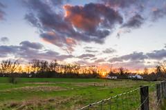 Last Ray (Fabian F_) Tags: sunset sky orange sun green field clouds last fence germany deutschland weide essen day ray sonnenuntergang tag himmel wolken nrw grn sunrays zaun sonne sonnenstrahlen strahl
