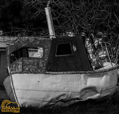 Abandoned Boat (Golden_Republic_Photography) Tags: california county wood old school cold west abandoned church barn marina moss rust ruins grafitti christ rice bell market decay pigeon burger country grain delta silo east warehouse verona sutter sacramento westcoast omd spartan sacramentoriver trowbridge nicolaus em5 enhs