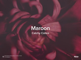 Catchy Colors: Maroon