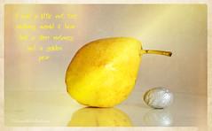 I had a little nut tree (sure2talk) Tags: reflection texture pear nutmeg nurseryrhyme goldenpear silvernutmeg nikond7000 ihadalittlenuttree nikkor85mmf35gafsedvrmicro 116picturesin201682illustrateanurseryrhyme