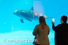 Environmental Portrait photography of Lyle Benson - Baltimore Maryland (Remsberg Photos) Tags: usa animal aquarium photo women marine maryland baltimore dolphins twopeople nationalaquarium iphone aquaticlife